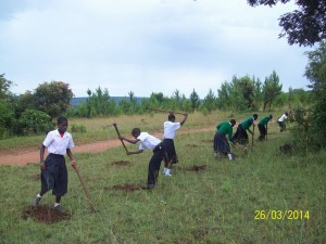 reforestation and schools in Tanzania