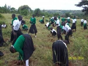 eco schools Tanzania