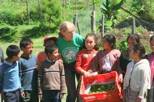 agroforestry Guatemala