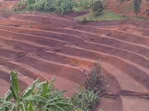 integrated watershed management Rwanda