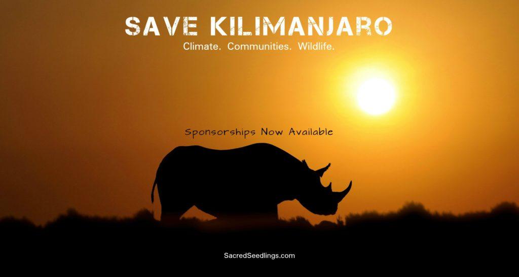 Africa wildlife conservation